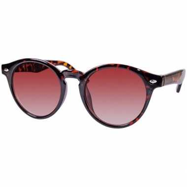 290d9fd6fb8580 clubmaster dames zonnebril goedkope model