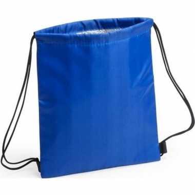 Goedkope blauwe koeltas rugzak
