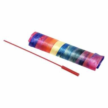 Goedkope danslint regenboog speelgoed