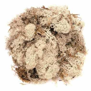 Goedkope decoratie mos naturel gram