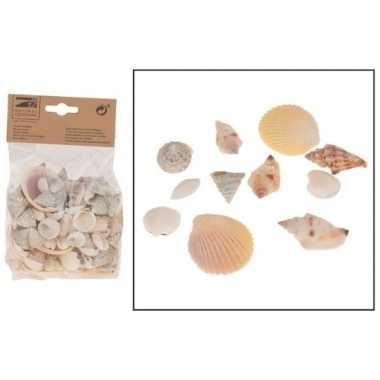 Goedkope decoratie schelpen mix gram