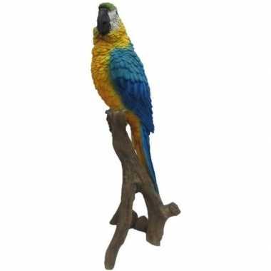Goedkope dierenbeeld blauw/gele papegaai stam