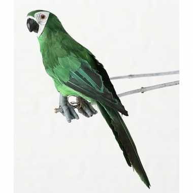 Goedkope dierenbeeld groene ara papegaai vogel hangdecoratie