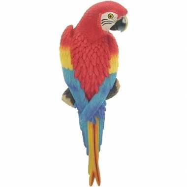 Goedkope dierenbeeld rode ara papegaai vogel tuinbeeld hangdeco