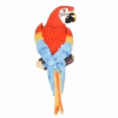 Goedkope dierenbeeld rode ara papegaai vogel