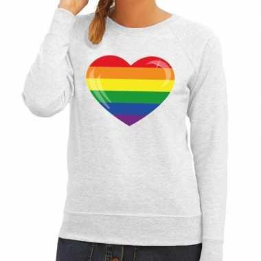 Goedkope gay pride regenboog hart sweater grijs dames
