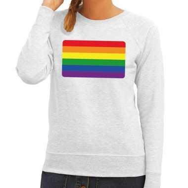 Goedkope gay pride regenboog vlag sweater grijs dames
