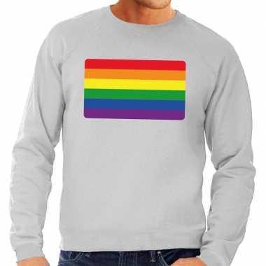 Goedkope gay pride regenboog vlag sweater grijs heren