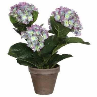 Goedkope groene/paarse hortensia kunstplant pot