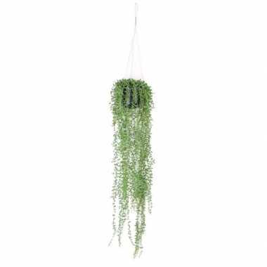Goedkope groene senecio/erwtenplant kunstplant hangende pot