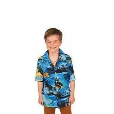Goedkope hawaii blouse/overhemd blauw jongens