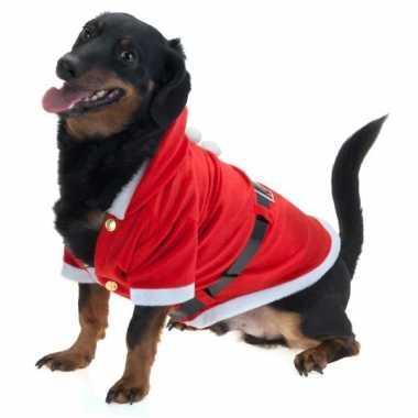Goedkope kerstjas hond maat m