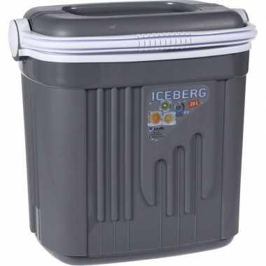 Goedkope koelbox kunststof grijs liter