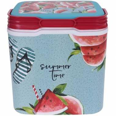 Goedkope koelbox summertime kunststof liter