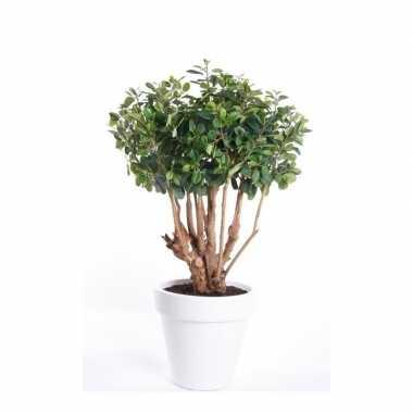 Goedkope kunstplant ficus groen witte ronde pot