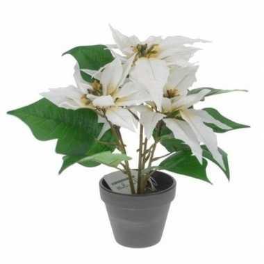 Goedkope kunstplant poinsettia wit pot