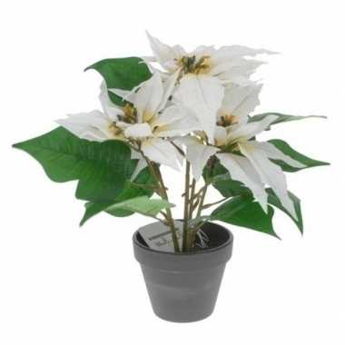 Goedkope kunstplant witte kerstster pot