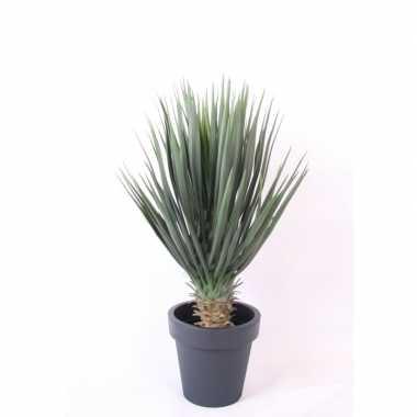 Goedkope kunstplant yucca rostrata palmlelie antraciet pot
