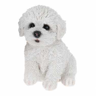Goedkope maltezer honden beeldje binnen