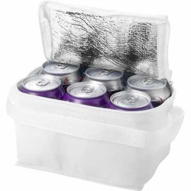 Goedkope mini koeltas wit /sixpack blikjes , liter