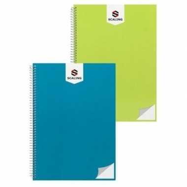 Goedkope notitieblok/lijntjes schrift a groen