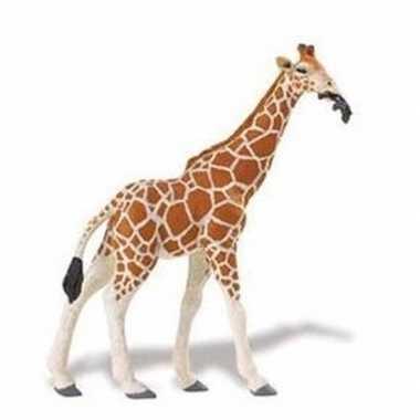 Goedkope plastic somalische giraffe