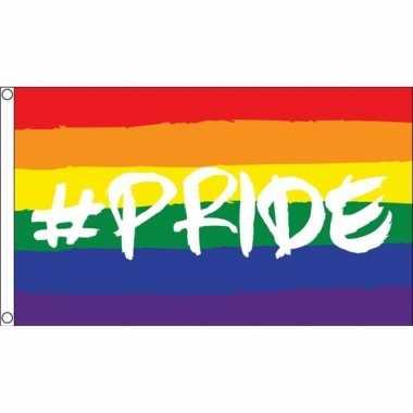 Goedkope regenboog lgbt vlag hashtag pride