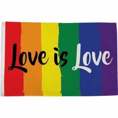 Goedkope regenboog lgbt vlag love is love verticale strepen