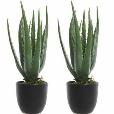 Goedkope x groene aloe vera kunstplanten zwarte pot