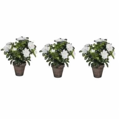Goedkope x groene azalea kunstplant witte bloemen pot stan grey