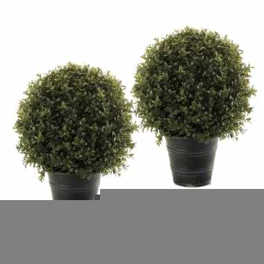 Goedkope x groene buxus/bol struiken kunstplant zwarte pot