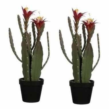Goedkope x groene cactus kunstplanten groene plastic pot
