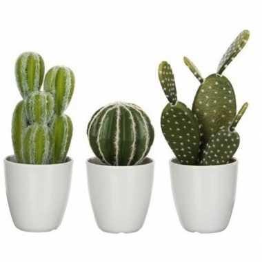 Goedkope x groene cactussen kunstplanten witte pot