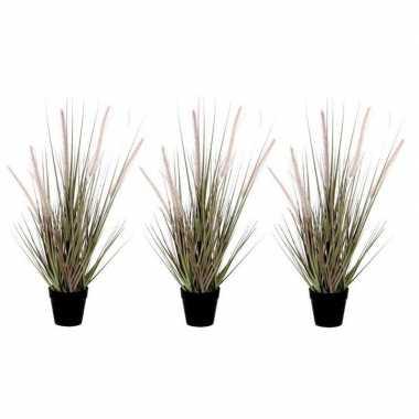 Goedkope x groene dogtail/siergras kunstplant zwarte pot