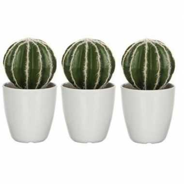 Goedkope x groene echinocactus/bolcactus kunstplanten witte pot