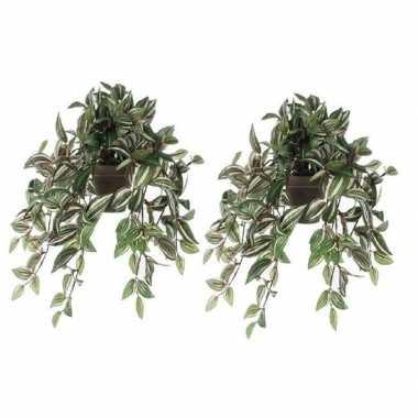 Goedkope x groene tradescantia/vaderplant kunstplant hangende pot