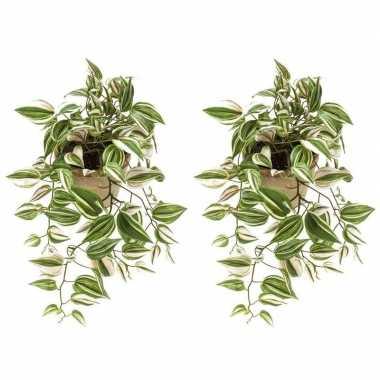 Goedkope x groene tradescantia/vaderplant kunstplanten
