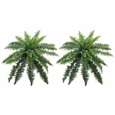 Goedkope x groene varen kunstplanten binnen