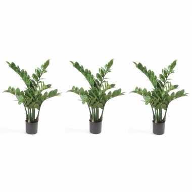 Goedkope x groene zamioculcus kunstplanten