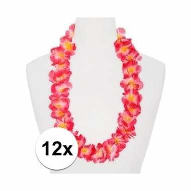 Goedkope x hawaii kransen roze/oranje