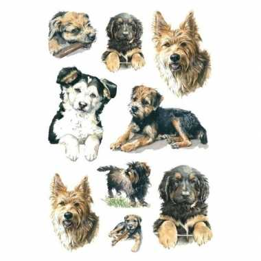 Goedkope x honden/puppy dieren stickers