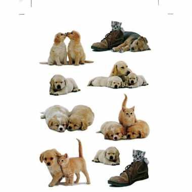 Goedkope x honden/puppy katten/poezen dieren stickers