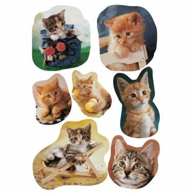 Goedkope x katten/poezen dieren stickers
