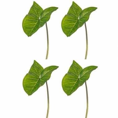 Goedkope x kunst aronskelkblad bladgroen takken