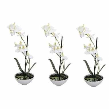 Goedkope x kunstplant witte orchidee/phalaenopsis pot