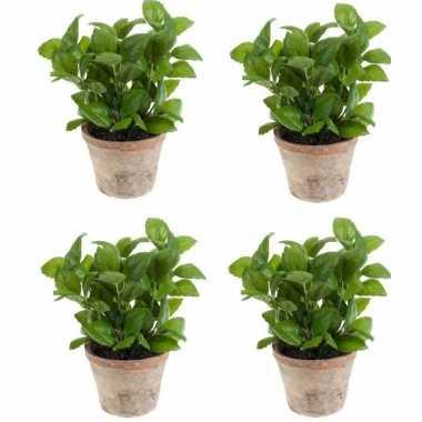 Goedkope x kunstplanten basilicum kruiden groen terracotta pot