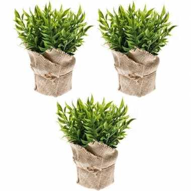 Goedkope x kunstplanten muizendoorn kruiden groen jute pot