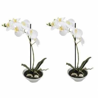 Goedkope x kunstplanten witte orchidee/phalaenopsis pot