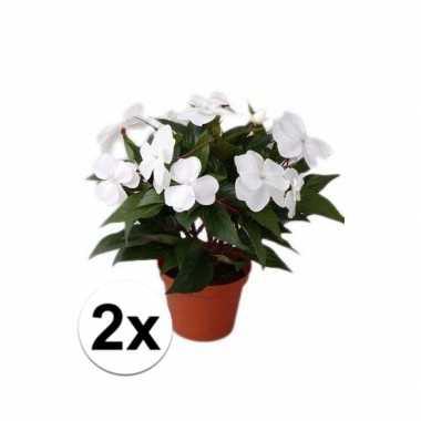 Goedkope x stuks kunstplanten wit vlijtig liesje pot