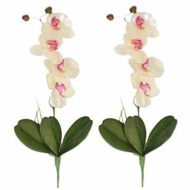 Goedkope x wit/roze orchidee/phalaenopsis kunstplanten binnen